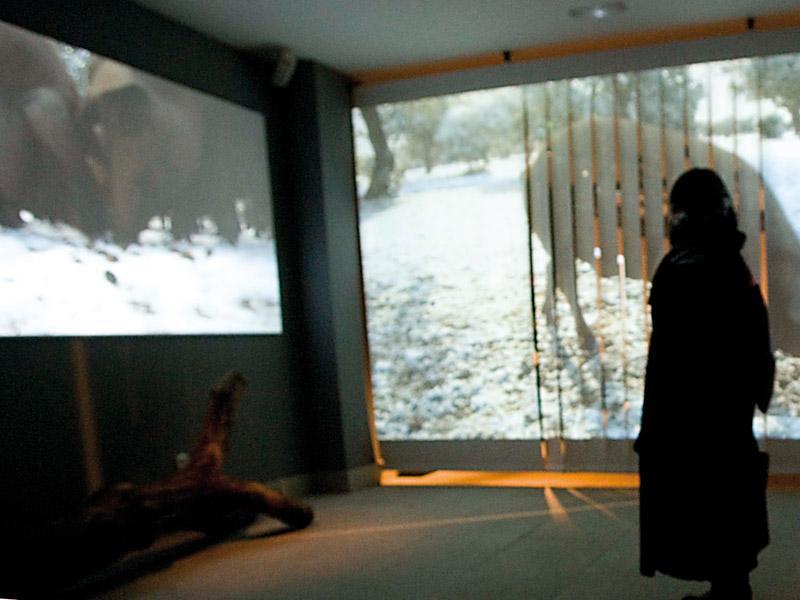 Museo Guijuelo - Ambito2 01
