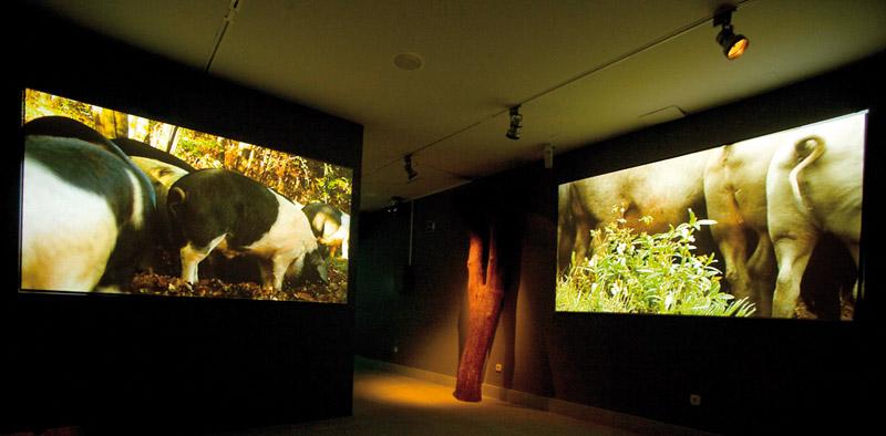 Museo Guijuelo - Ambito2 02
